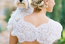pets at wedding / My wedding day would be so much more special with my pet. They are also a part pf your family so of coures they schould be with you on that special day. And I mean look how cute the pictures gets.