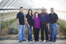Joseph & Sons- CA Flower Growers / J spends the day with the Jose Ortiz and his family at Joseph & Sons. Growing in 3 California locations to provide exceptional quality flowers and amazing customer service. Jose Ortiz and his children talk about about their family flower farm and their Stock, Larkspur, Delphinium, Snaps and other Joseph & Sons CA Grown Flowers!   For More Information about Joseph & Sons visit www.josephnsons.com   / by J Schwanke