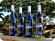 Our Vineyards & Partners
