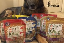 [Rolo's Pet Product Reviews] / In this board we will feature pet product reviews we have conducted over the years :)