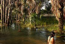 Recursos hídricos e suas áreas de preservação permanente