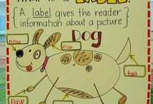 Anchor Charts / by Lauren Fussell