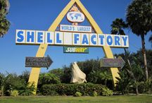Florida Roadside Attractions / by Beach4Good