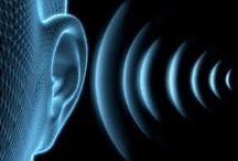 Auditory Processing  / How hearing affects learning