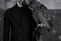 Birds / by Naomi Anderson