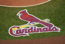 Cardinal Nation / All of my husband's paternal family resides in MO and we enjoy visiting as often as we can.  We also love planning our visits when we can attend a game.  My husband has been a life long Cardinal fan and we named our oldest son after Cardinal great, Lou Brock. Cardiac Cards have a winning tradition much like my beloved 'Bama football.  Go Cards!    / by Ang