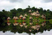 Napo Wildlife Lodge Equador
