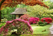 Japanese Gardens and more / by Couch noneyadamnbusiness