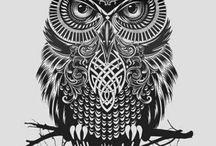Owls / by Kim McChesney