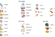 Animals and pets vocabulary ! / My board is about the correct writing of animmal´s vocabulary