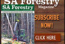 sa forestry