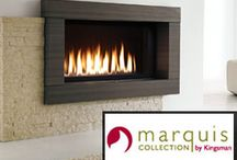 Fireplaces / Foyer Lamberts suggest  a wide range of Fireplaces and accessories: gas fireplaces, gas inserts, gas stoves, wood burning stoves, wood burning inserts.