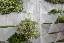 Exterior Feature Walls