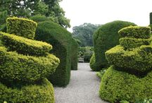 Levens Hall Garden / Beautiful topiary garden near Kendal, UK. From my visit, July 2013.