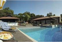 Resorts / This resort promises you a royal stay with wonderful services and experience at very affordable prices.  A large swimming pool with a Jacuzzi attached to it, offers you an infinite view of the hills that you can enjoy all day long.