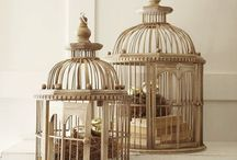 Bird cages / by Jennifer Holm