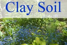 Clay Soil and Gardening