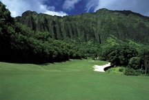 Hawaii Golf Courses / Great Hawaii golf courses at great online tee time prices / by GolfByMe