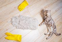 Tip para quitar polvo en la casa