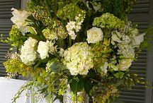 Flowers :: Wedding / by JuliAnne Kelly