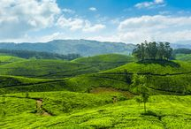 Hill Stations In India / Hill Stations In India Which Will Make You Want To Retire And Settle Down
