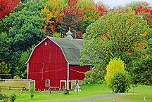 I Love Barns! / No, I really ,really LOVE them