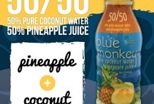 Blue Monkey Coconut Collection