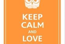 LifeWise: Owls We Love