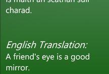 Gaeilge/Irish / Irish language