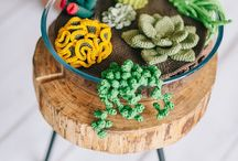 Cactus y plantas a ganchillo