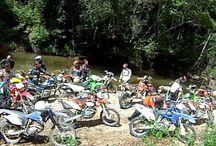 Trails / Bikies run do the hils