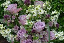 cut flower arrangements / Summer Flowers