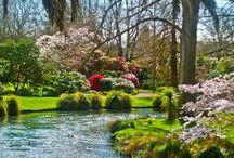 Gardens of New Zealand