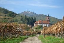 Alsace / La route du Vin d' Alsace