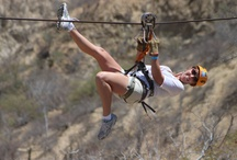 Tortuga Ziplines - Los Cabos / The longest and closest zipline circuit in the area of Los Cabos, just 20 minutes away from San Jose and San Lucas. 8 lines with up to 814 meters long!