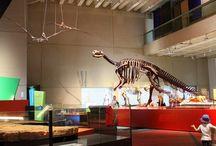 Museums around Brisbane