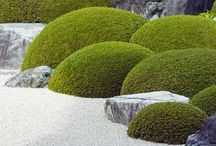 Japanese Gardens, Architecture and more