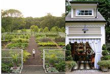 Everything Garden