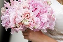 Flower diva / by Cheryl Stommel