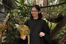Lunar New Year- Year of the Monkey / Celebrating the year of the monkey- 2016 at Melbourne Zoo, Healesville Sanctuary,