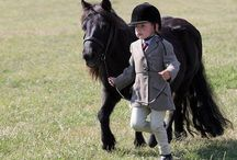 All Things Horse  / by Nest Consignments
