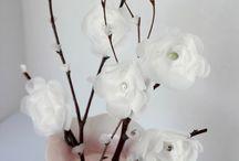 Flowers / by Carrie Perrins 3595