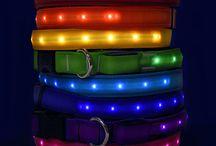 Light Up Dog Collars / Reflective Dog Collars: Light Up Pet Collar - Hot Dog Collars