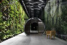 Biophilic Interior Design & Architecture / Inspiration for my research on Biophilic Interior Design. B.Tech