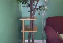 Cat Tree's
