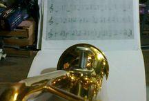 trompeta / trumpet