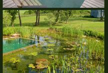 Swimming ponds / Swimming ponds