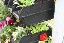 CONTAINER GARDENING / by The Sustainable Life