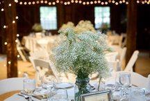 Centerpieces / by Caitlin Geraghty