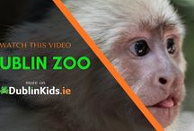 Things to do in Dublin. Watch the videos